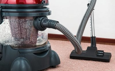 Dyson V7 vs. V8: Differences Between Them